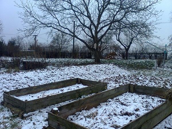 Tyto kompostovací vyvýšené záhony průběžně plním starou slámou, štěpkou, pilinami, vytrhaným plevelem a na podzim také listím. V zimě je kropím močí; přes sezónu v nich pěstuju. Výborně se zde daří bramborám a dýním.